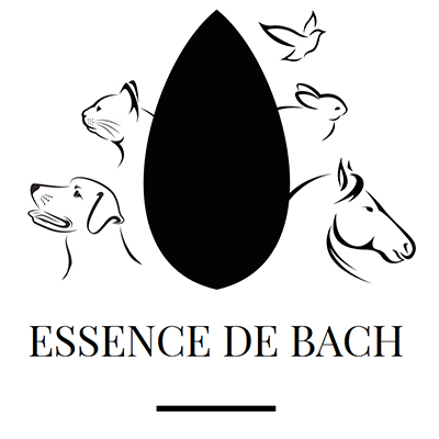 Essernce de Bach